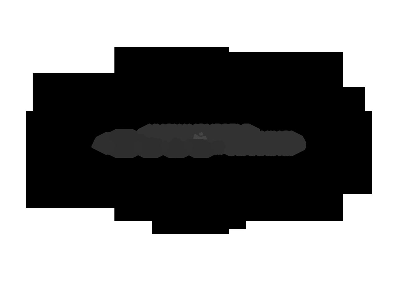 HEAL Scanning