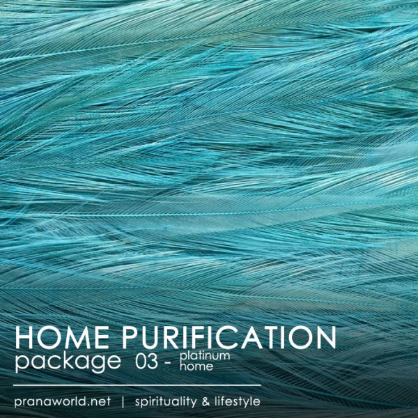 Platinum Home Purification Package