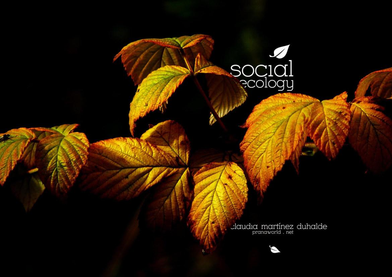 Social-Ecology