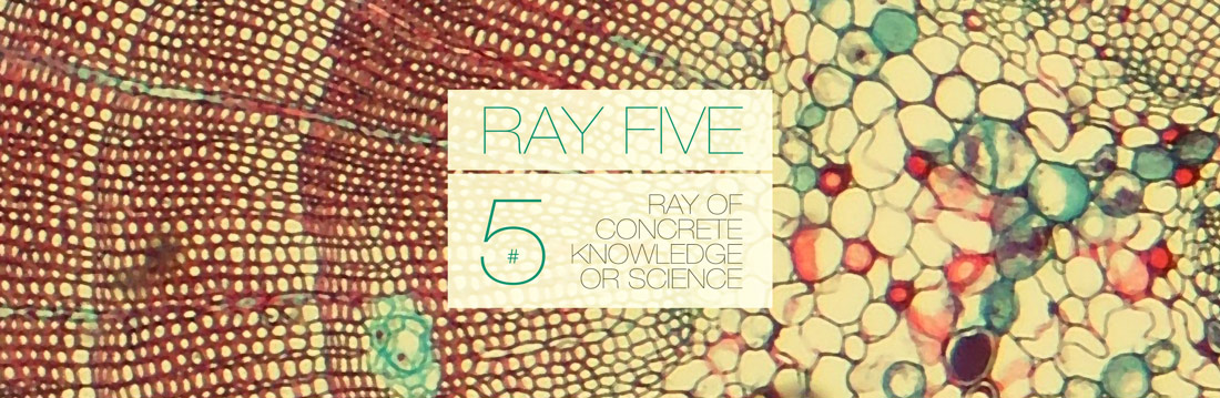 Ray Five Ray of Concrete Knowledge or Science