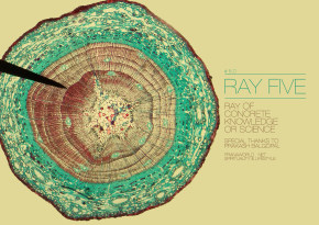 The-Seven-Rays-Of-Life-Ray-Five