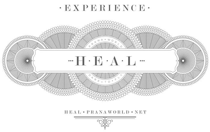 H.E.A.L Box Image